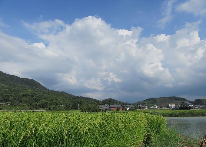 夏の雲 28.8.18