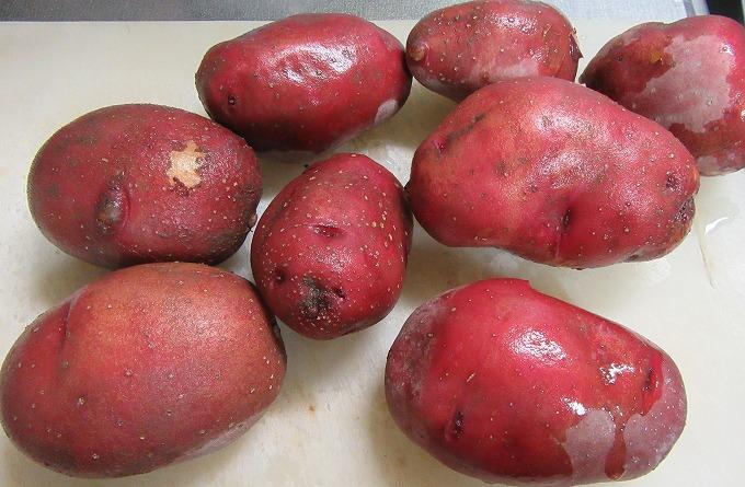 赤いジャガイモ洗って 28.7.11
