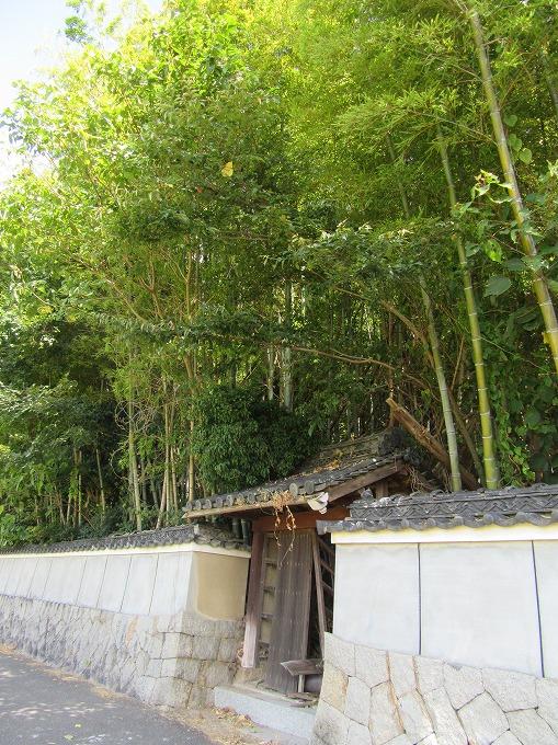 塀の中は竹藪 28.9.1