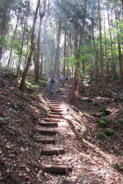 志保山に登る 縦 28.4.26