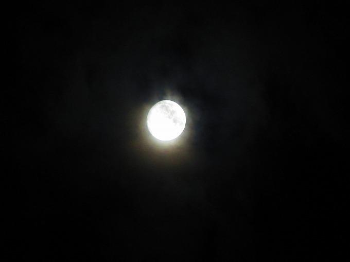 小望月 28.10.14