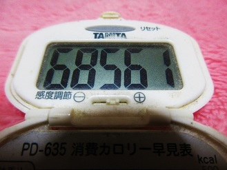 161106-291歩数計(S)