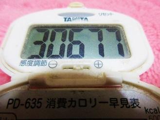 161112-291歩数計(S)