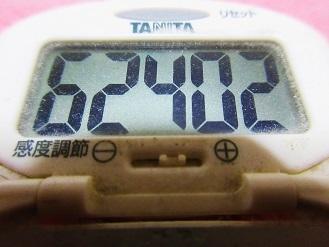 161113-291歩数計(S)