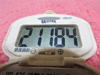 161119-291歩数計(S)