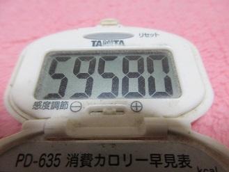 161120-291歩数計(S)