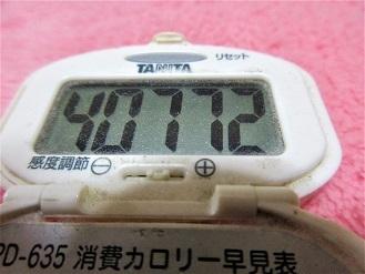 161123-291歩数計(S)