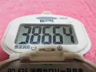 161126-291歩数計(S)
