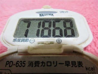 161127-291歩数計(S)