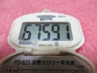161204-210歩数計(S)