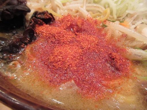 161204-109唐辛子(S)