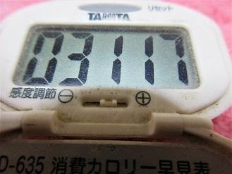 161205-291歩数計(S)