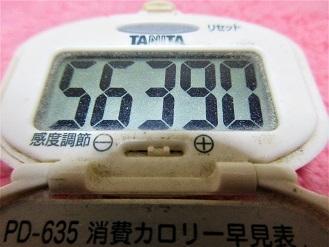 161211-291歩数計(S)