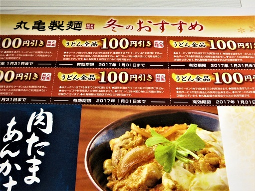 161217-110百円引券(S)