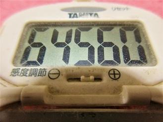 161218-291歩数計(S)