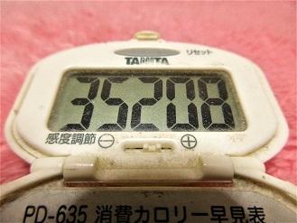 161223-291歩数計(S)
