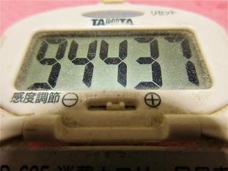 161225-291歩数計(S)