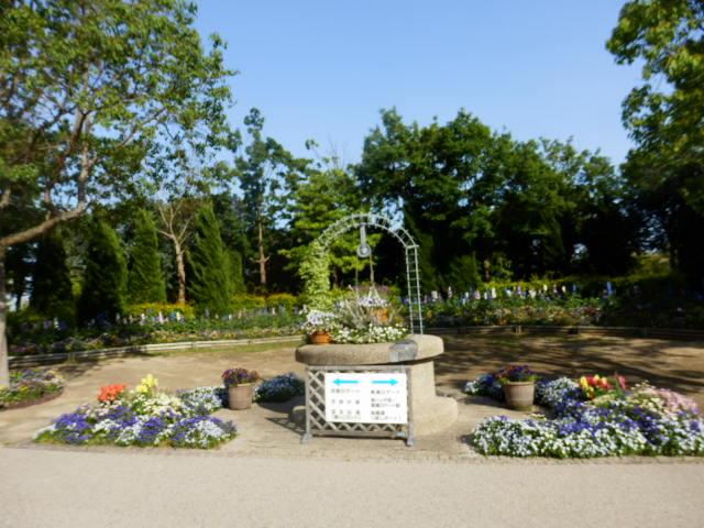 明石海峡公園 (4)