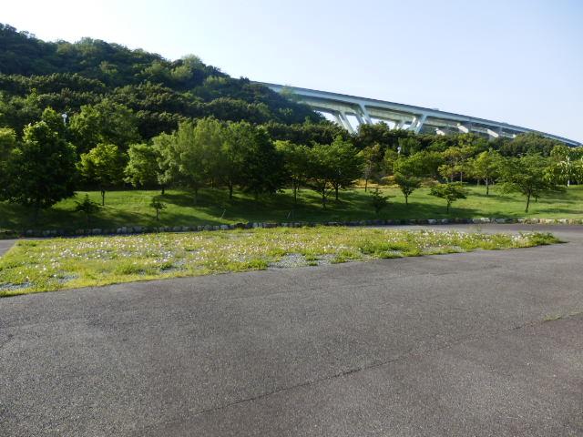 明石海峡公園 (13)