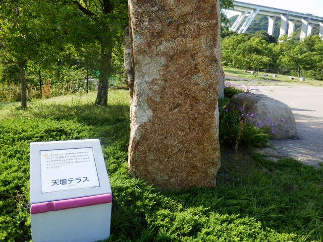 明石海峡公園 (11)