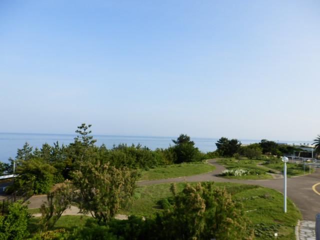 明石海峡公園 (44)