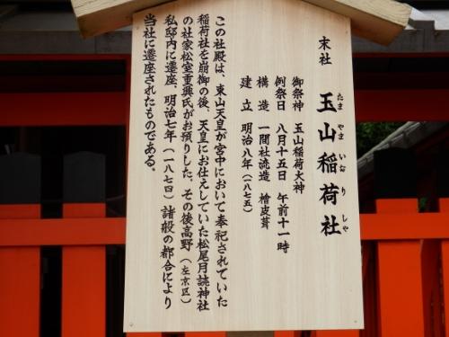 本殿から千本鳥居 (4)_resized