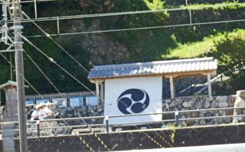 3日鳥羽水族館 (92)_resized