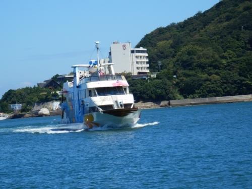 3日イルカ島 (1)11:57_resized