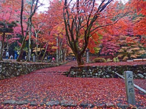 鶏足寺 (4)●_resized