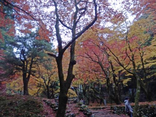 鶏足寺 (8)_resized