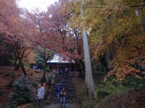 鶏足寺 (14)_resized