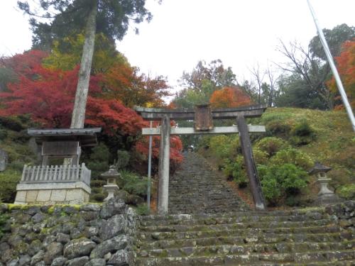 神前神社 (1)14:06_resized