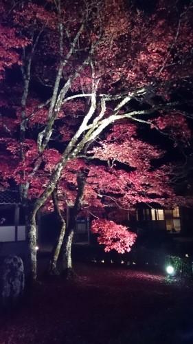 永源寺 (18)_resized