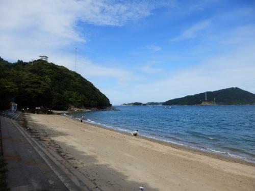3日イルカ島 (51)_resized