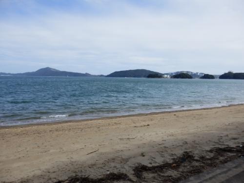 3日イルカ島 (50)_resized