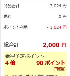 スクリーンショット (300)