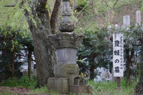 7豊姫 (1200x800)