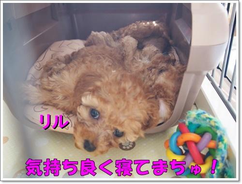 20161018_003_01.jpg