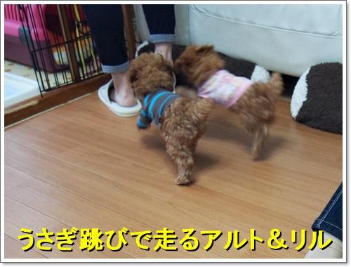 20161022_002.jpg