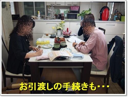 20161029_013.jpg