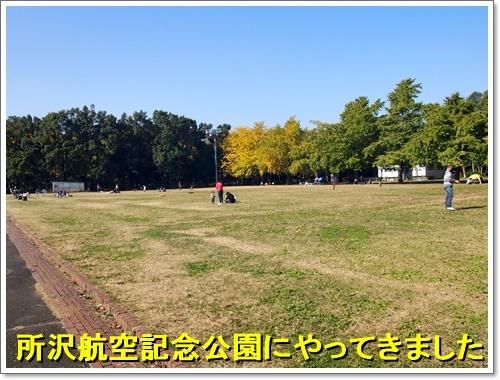 20161113_084.jpg