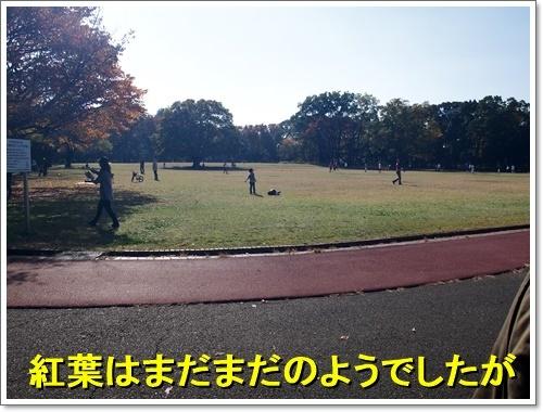 20161113_085.jpg