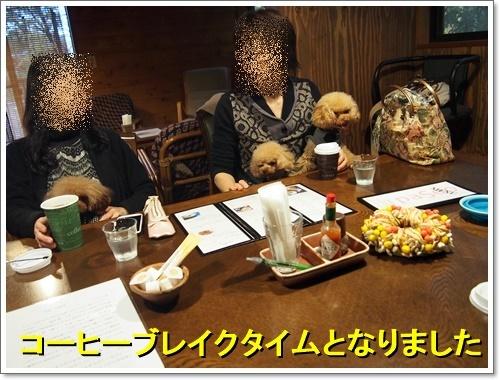 20161119_035.jpg