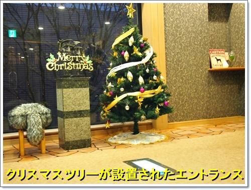 20161119_109.jpg