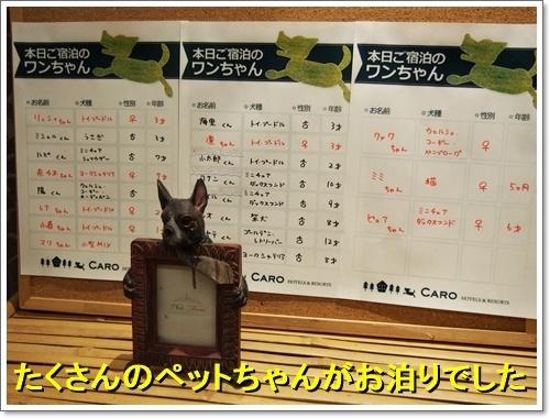 20161119_111.jpg