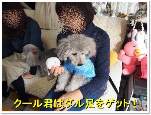 20161208_242.jpg