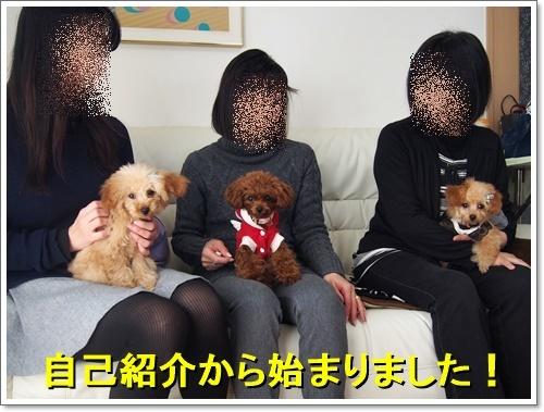20161218_012.jpg