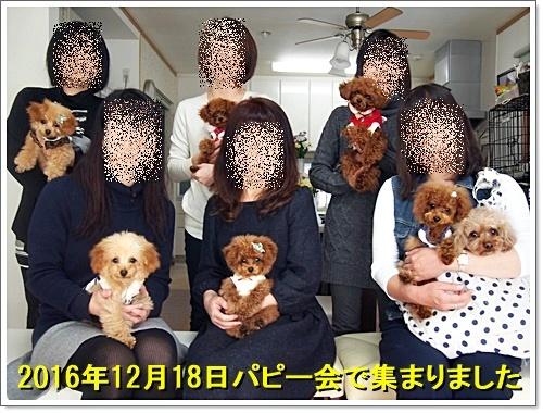 20161218_052.jpg