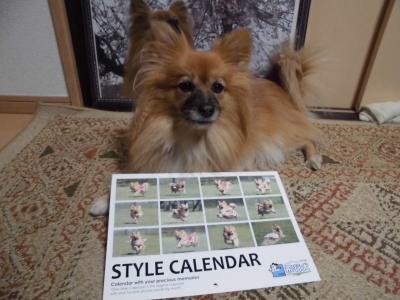 飛行犬カレンダー