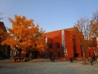 大学路 ソウル 紅葉